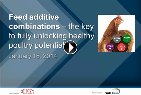 "In this webinar, Dr Kirk Klasing and Danisco Animal Nutrition's Dr Ajay Awati discuss the topic ""Feed additive combinations - the key to fully unlocking healthy poultry potential?"""